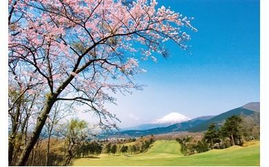 A-7 東富士C・Cゴルフプレー利用券1枚