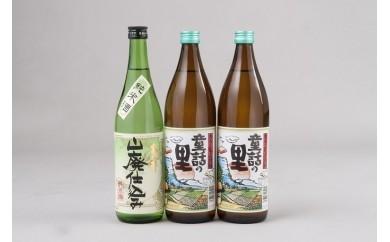 A-22 亀の井 清酒&麦焼酎よくばりセット