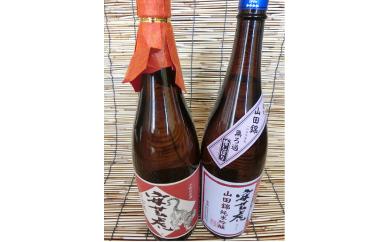 8.-(2)安芸虎純米大吟醸・純吟セット