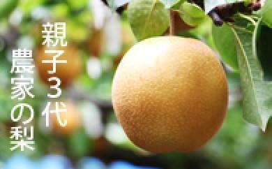 B-44 合六果樹園 親子3代農家の梨シリーズ 5kg