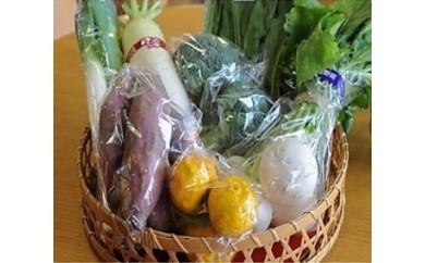 10 地場産野菜の詰め合わせ
