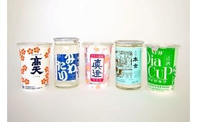 10-01 諏訪郡ワンカップ飲み比べセット/信濃屋