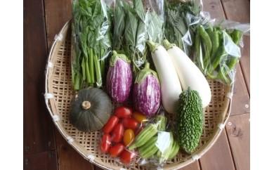 0010-03-01. 富士山麓の旬の野菜セット
