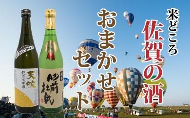 B-10 佐賀の清酒「おまかせセット」 720ml×2本