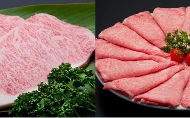 J-5「佐賀牛」ロースステーキ&しゃぶしゃぶセット(年6回)