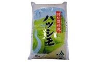 A002 特別栽培米 ハツシモ