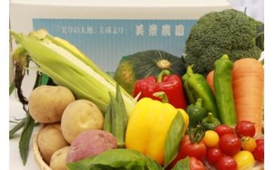 [015-18]平成30年発送 季節の野菜詰合せ