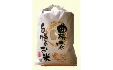 ⑦こしひかり白米(10kg)
