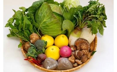 ⑪季節野菜の盛り合わせ