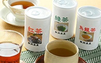 [№5702-0013]1本の茶の木から