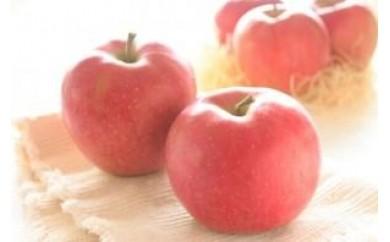 りんごBA-2 シナノスイート 5kg