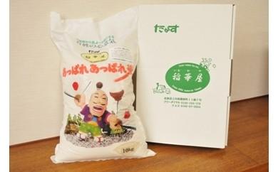 A013 平成30年産 稲華屋のあっぱれあっぱれ米(ななつぼし無洗米・10kg)