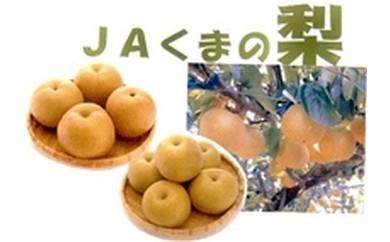 4 JAくまの梨