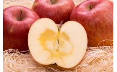 りんごCA-6 サンふじ 5キロセット