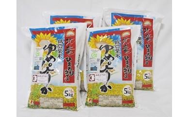 C003 【お米20kg】ゆめぴりか 低農薬米