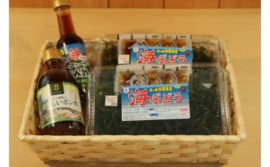 海ぶどうセットA(ポンズ付き)