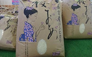 【R012】西方ブランド米「桜おとめ」10㎏【21000p】