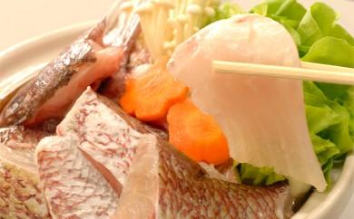 切るだけの簡単調理!高知が誇るブランド鯛「乙女鯛鍋セット」