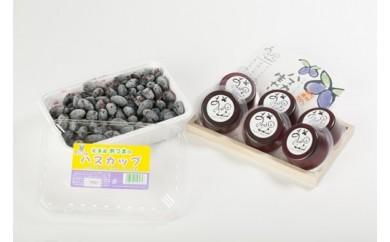 【A-003】絶品の厚真産ハスカップ+ゼリーセット