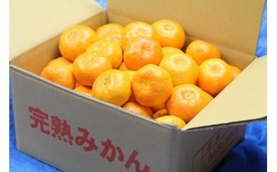 009-17山口農園の完熟みかん宮川早生(S、Mサイズ混合)