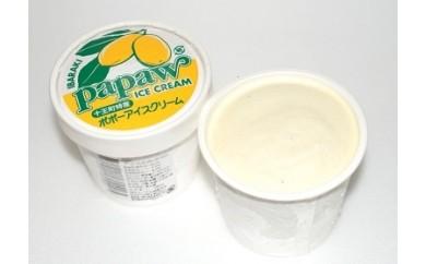 B-11 ポポーアイスクリーム詰め合わせ