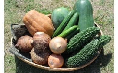 沖縄県東村 旬の野菜セット1