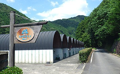 Ma-04 観光協会オススメ宿!「ライダーズイン四万十」の観光・宿泊券