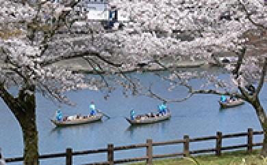 [№5636-0027]くま川下り 貸切船(ミドルコース)