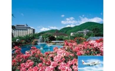 【237】 JALで行く2人で花巻の旅 福岡‐花巻(花巻温泉)ペア