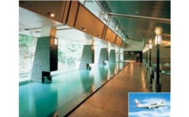 【240】 JALで行く2人で花巻の旅 福岡‐花巻(ホテル志戸平)ペア