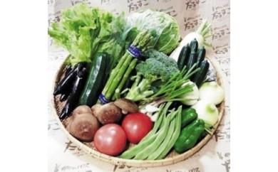 【006】 花巻のめぐみ野菜宝箱《20セット限定》