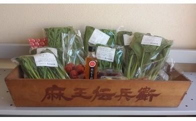 A1301 麻王伝兵衛 季節の野菜セット