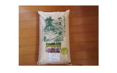 A034 減農薬米(こしひかり100%)(平成29年産) 5kg