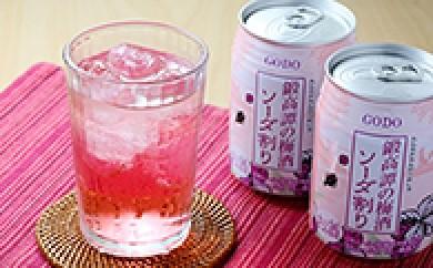 [№5723-0033]鍛高譚(たんたかたん)の梅酒ソーダ割 24缶入