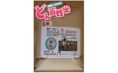 A-4 岐阜・かわべ どん百姓米(コシヒカリ玄米10kg)