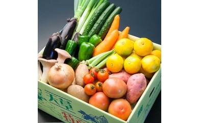 旬の野菜と果物の詰合せ