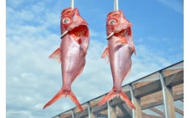 塩二郎のにがり干し 金目鯛 祝い用