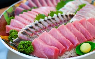 E-03 大将のおまかせ刺身セット!旬な海の幸をお届け!【藤原鮮魚店】(2~3種類盛)
