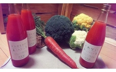 B-16 無農薬で育った良農園の野菜とにんじんジュースのセット