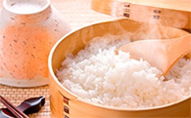 [№5737-0009]鈴ひかり(長野県松川村産コシヒカリ 5kg×1袋+2kg×2袋