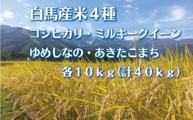 E040-01 白馬産米4種40kg
