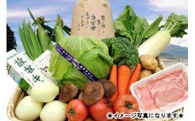 0010-02-02. 旬の野菜とお肉の詰め合わせ