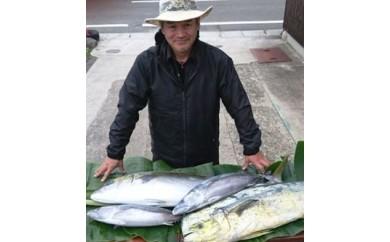 要太郎 鮮魚のさしみ盛合わせセット