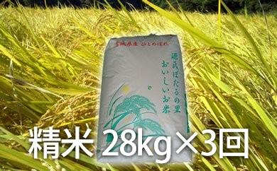ほたる米ひとめぼれ たっぷりセット
