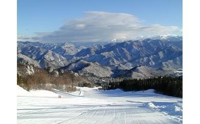 みなかみ町内スキー場共通1日リフト引換券 1枚
