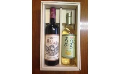 敷島醸造 昇仙峡 赤・甲州小梅ワインセット