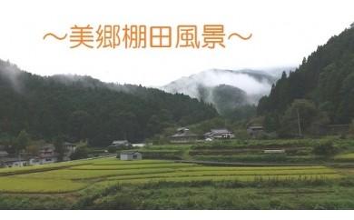 吉野川市美郷の棚田米(玄米&白米)