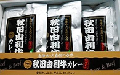 [№5685-0095]秋田由利牛 カレー(3箱セット)