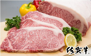 D-1 最高級ブランド銘柄!!佐賀牛「サーロインステーキ」 200gx2枚【チルドでお届け!】