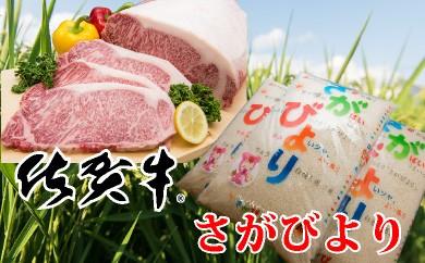 """E-6 最高級ブランド銘柄""""佐賀牛""""サーロインステーキ 200gx2枚&さがびより 10kg【お肉はチルドでお届け!】"""